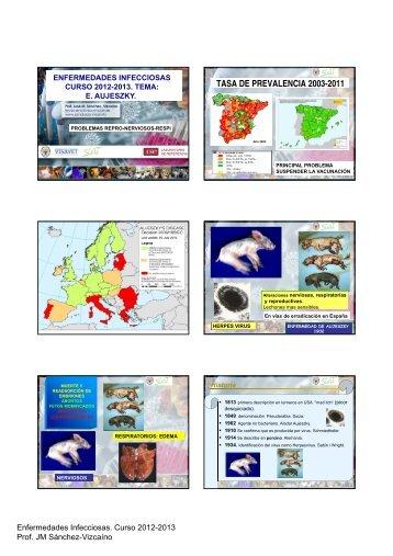 enfermedad de aujezsky - Sanidad Animal