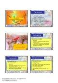 enfermedad de aujezsky - Sanidad Animal - Page 6