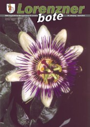Lorenzner Bote - Ausgabe April 2004 (2,6MB) (0 bytes)