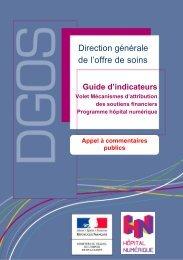 Le projet de guide d'indicateurs - Ministère des Affaires sociales et ...
