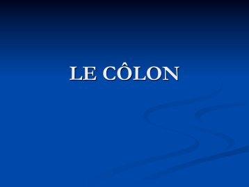 Anatomie Descriptive du Colon