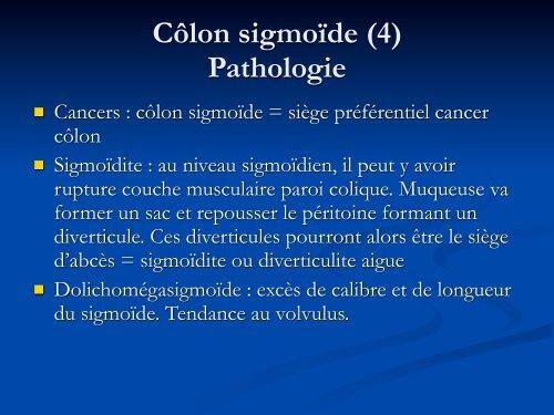 Côlon sigmoïde (3) Més
