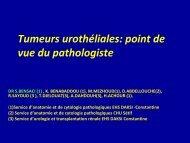 TM vessie pont de vue du pathologiste
