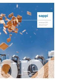 2010 Annual Report Sappi Southern Africa