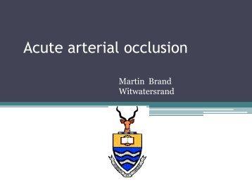 Acute arterial occlusion - SASSiT
