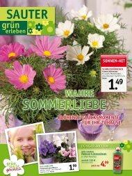 sommerlIeBe - SAUTER grün erleben - sauter-gartenbau.de
