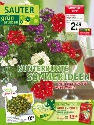 SOmmer - SAUTER grün erleben - sauter-gartenbau.de