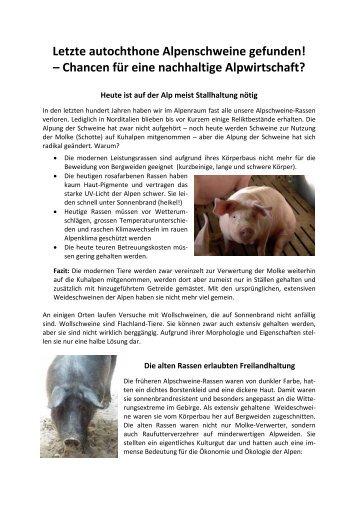 Letzte autochthone Alpenschweine gefunden! – Chancen für eine ...