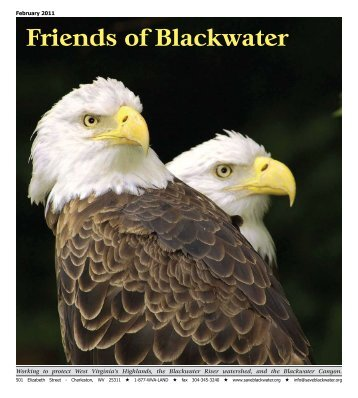 February 2011 - Friends of Blackwater Canyon