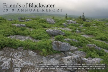Annual Report - Updated 2011 - Friends of Blackwater Canyon