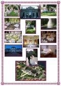 Savoyai Kastély- ESKÜVŐI ÁRAJÁNLAT 2011 - Savoyai Kastélyszálló - Page 7