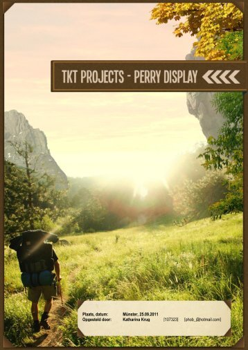 TKT-projects - Perry Display