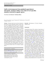 GalEa retrotransposons from galatheid squat lobsters - ResearchGate
