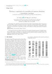 Técnicas e construções de ensembles de matrizes aleatórias e ...