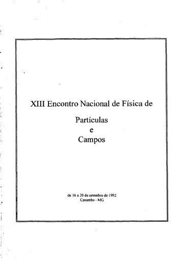XIII Encontro Nacional de Física de Partículas e Campos.pdf