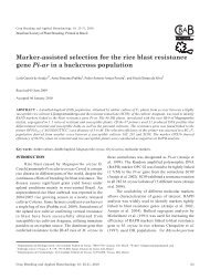 Marker-assisted selection for the rice blast resistance - SBMP
