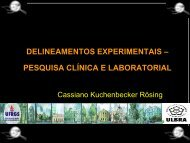 Prof. Dr. Cassiano Kuchenbecker Rösing