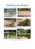Download als PDF - SBSZ - Jena Göschwitz - Seite 5