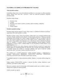 navodilo za izdelavo projektne naloge