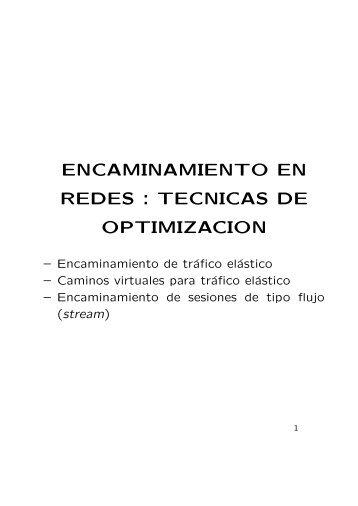ENCAMINAMIENTO EN REDES : TECNICAS DE OPTIMIZACION