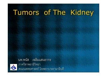 Tumor of Kidney2011