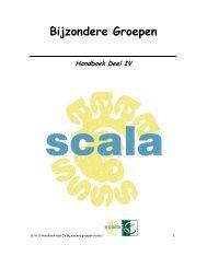 Deel I De Bijspringer in dorp of wijk - Scala-Welzijn