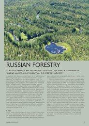 Russian forestry. Geo: International Magazine