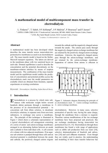 A mathematical model of multicomponent mass transfer in ...
