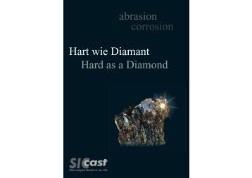 abrasion corrosion Hart wie Diamant Hard as a ... - Düchting Pumpen