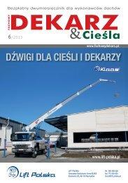 Fachowy Dekarz & Cieśla 6/2013