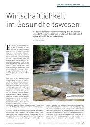 Wirtschaftlichkeit im Gesundheitswesen - Schaffler Verlag