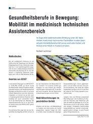 Gesundheitsberufe in Bewegung: Mobilität im ... - Schaffler Verlag