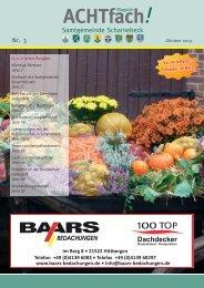 ACHTfach Ausgabe Oktober 2013 (pdf 14,55 MB) - Samtgemeinde ...