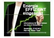 Energieeffizienz in Unterenehmen (PDF, 1 MB)