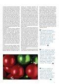 Como correram as vendas de Natal de 2009? - Page 5