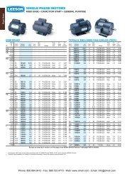 LEESON Single-Phase / Three-Phase AC Motors