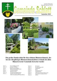 (7,52 MB) - .PDF - Schlatt
