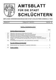 Amtsblatt Nr. 20 vom 17. Mai 2013 - Stadt Schlüchtern
