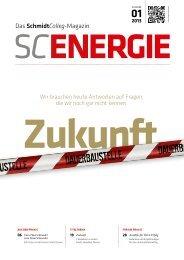01 2013 - SchmidtColleg GmbH & Co. KG