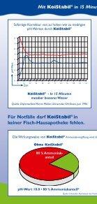 Flyer KoiStabil® (175,9 kB) - Söll - Seite 2