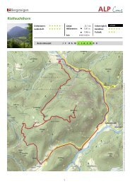 Bergsteigen Ristfeuchthorn - Schneizlreuth