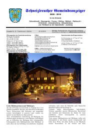 Gemeindeanzeiger 4-10 - Schneizlreuth