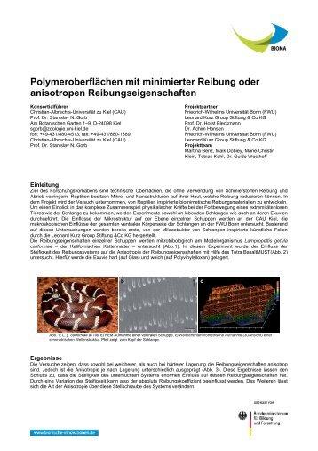 Polymeroberflächen mit minimierter Reibung oder anisotropen ...