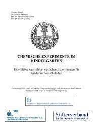 Chemische Experimente im Kindergarten - Chemie im Alltag