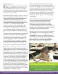 The School Climate Challenge - Education Commission of the States - Page 5