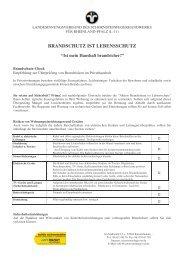BRANDSCHUTZ IST LEBENSSCHUTZ - Der Schornsteinfeger