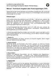 Technische Angaben über Feuerungsanlagen - LIV Baden ...
