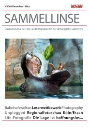 pdf-Download des Heftes - BSW Foto