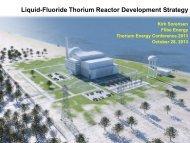 Flibe Energy LFTR Development Strategy - Kirk Sorensen - Flibe Energy - ThEC13
