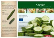 Gurken - AMA-Marketing